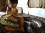 Бразильский ребёнок до смерти искусал ядовитую змею