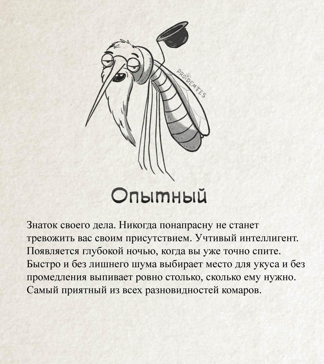 Комар «Опытный»