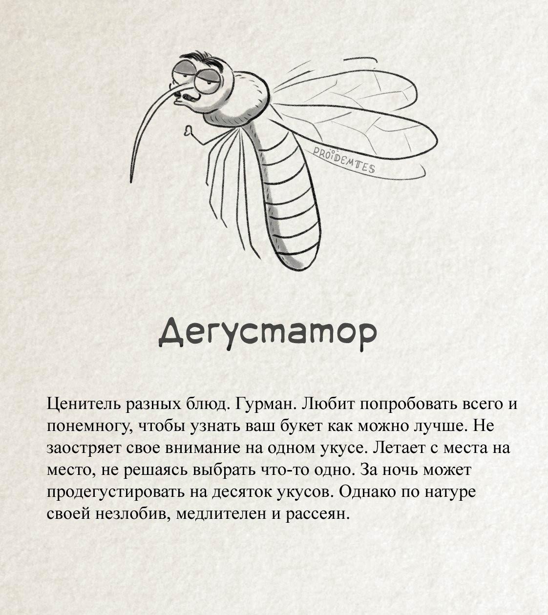 Комар «Дегустатор»