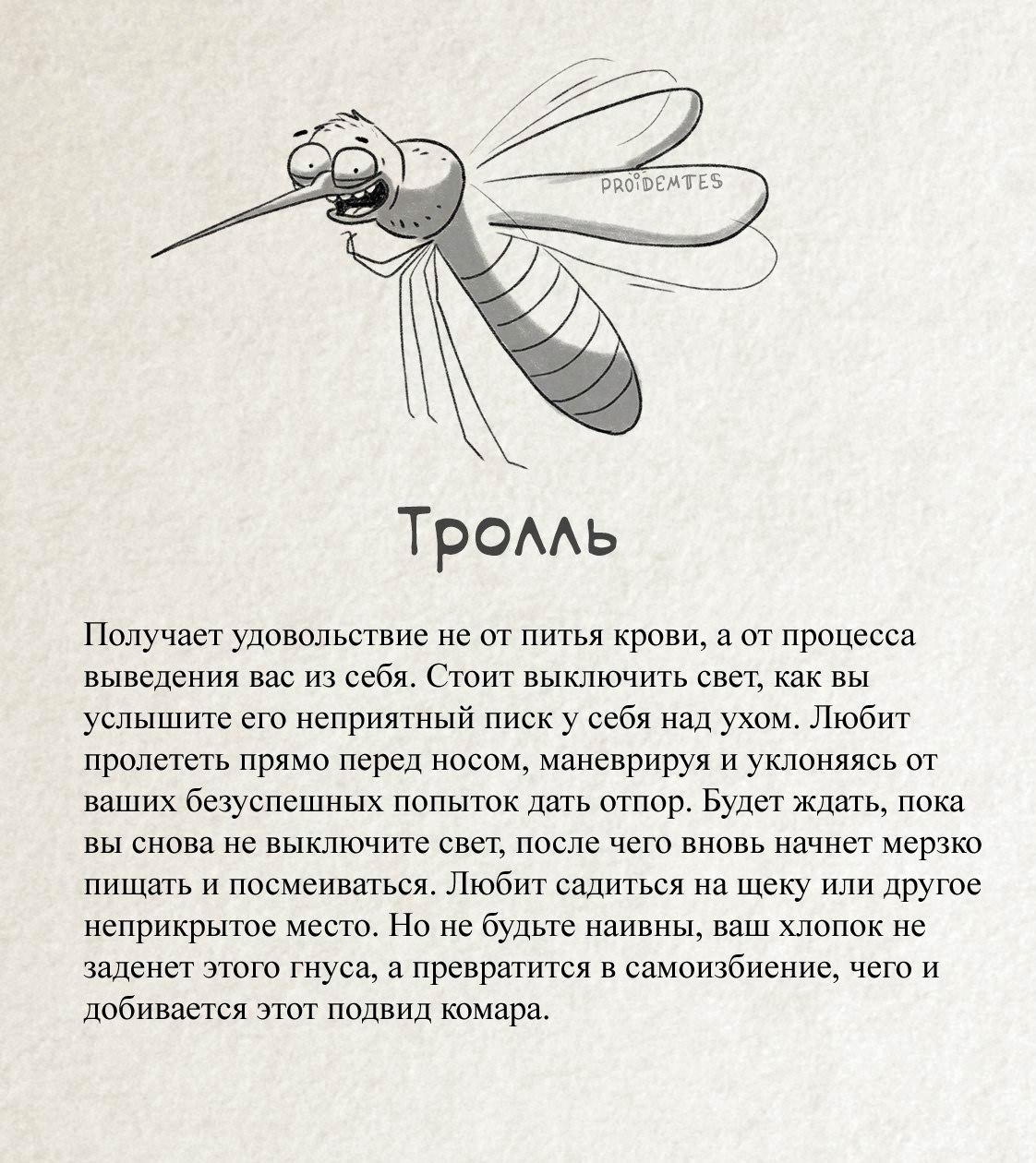 Комар «Тролль»